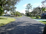 Another lovely, tree-lined tropical neighborhood street at Cypress Cove.