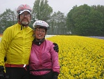 Cycling Thru Holland, April 2009