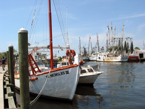 Tarpon Springs is a charming Greek fishing village. We bought great olives there.