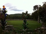 QC bottle trees