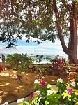 The view while eating lunch at Aloha Mixed Plate on Maui