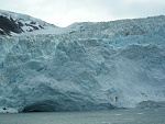 One of many glaciers we saw on a glacier cruise out of Whittier, AK