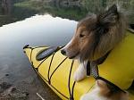 Canyon Lake with Razz & kayak