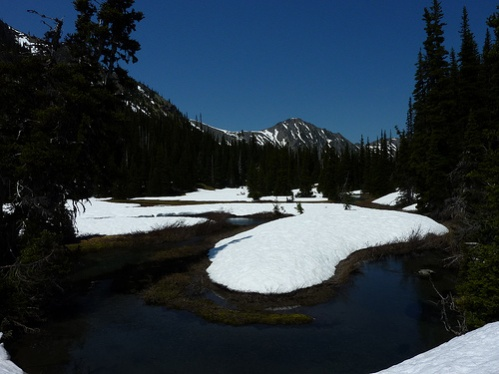 Royal Basin, Upper Meadows, ONP