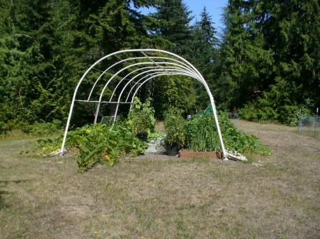sept 1 garden 027